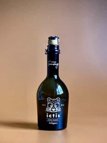 Photo d'une bouteille de bières Paris de 33 cl teinte cannelle