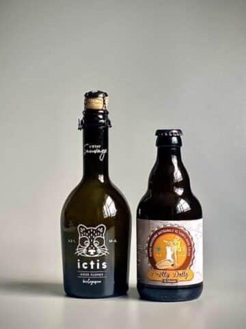 Photo de deux bouteilles de bières